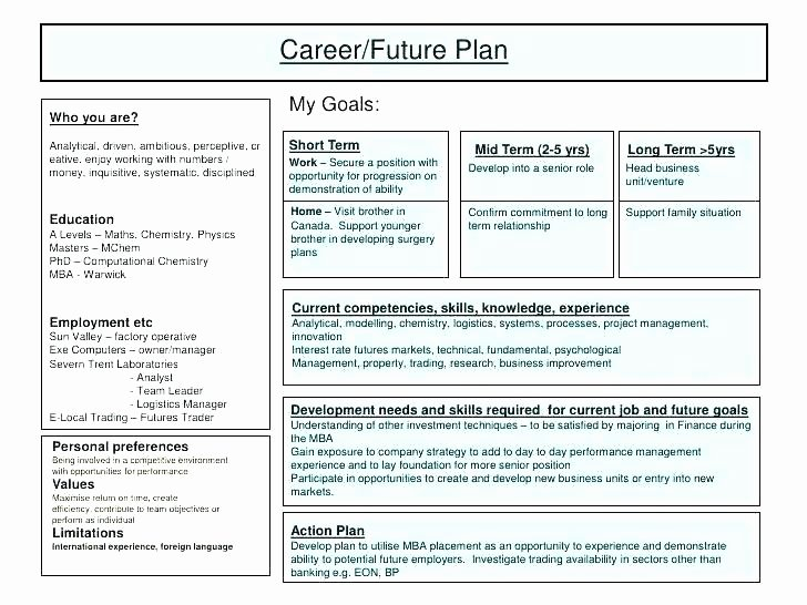 Employment Action Plan Template Lovely Restaurant Action Plan Template