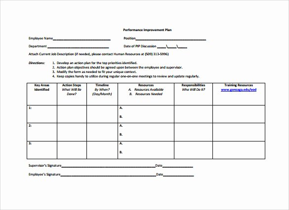 Employment Action Plan Template Luxury 12 Sample Employee Action Plan Templates