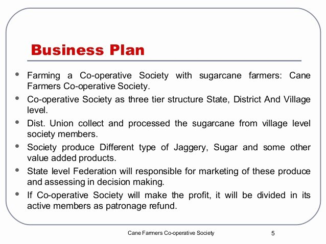 Farm Business Plan Template Awesome Co Operative Business Plan Group 1