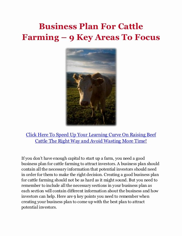 Farm Business Plan Template Fresh Business Plan for Cattle Farming – 9 Key areas to Focus
