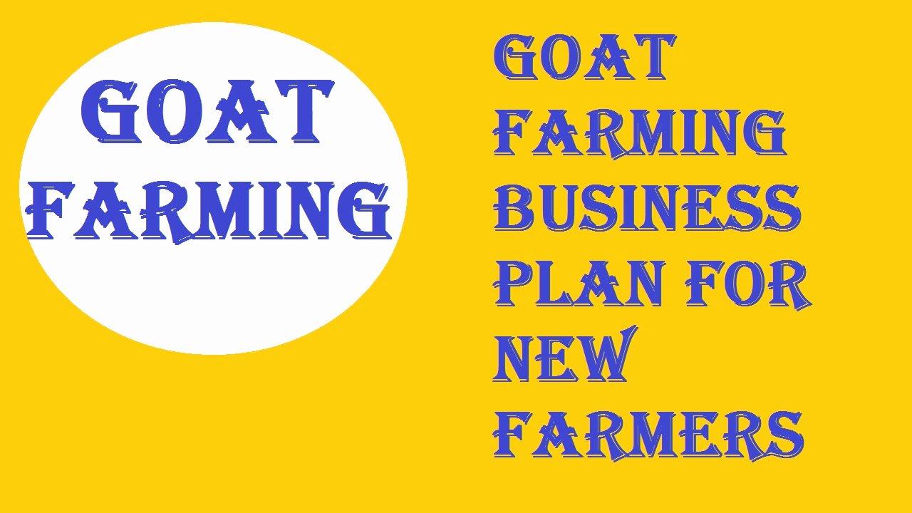 Farm Business Plan Template Fresh Goat Farming Business Plan for New Farmers