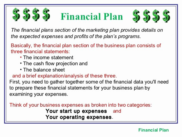 Financial Advisor Business Plan Template Awesome Business Financial Plan Sample Erreport269 Web Fc2