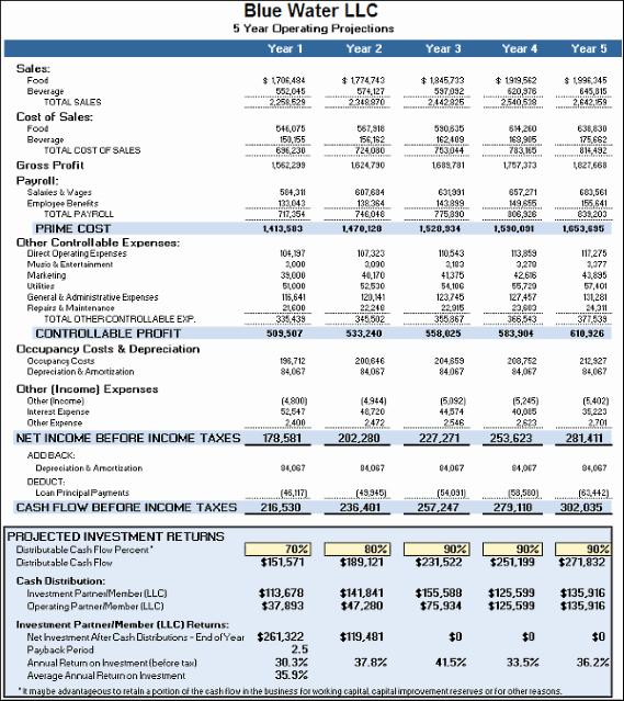 Financial Advisor Business Plan Template Fresh Business Plan Financials