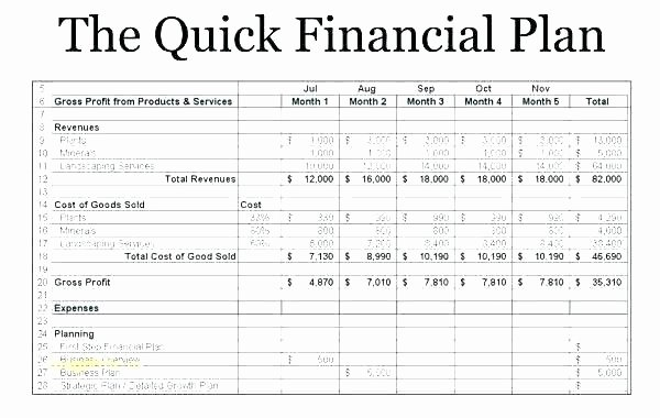 Financial Advisor Business Plan Template Fresh Financial Plan for Business Financial Plan Template