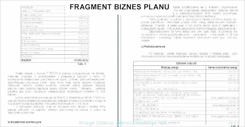 Financial Advisor Business Plan Template Lovely Business Plan Financial Template Business Plan Financial