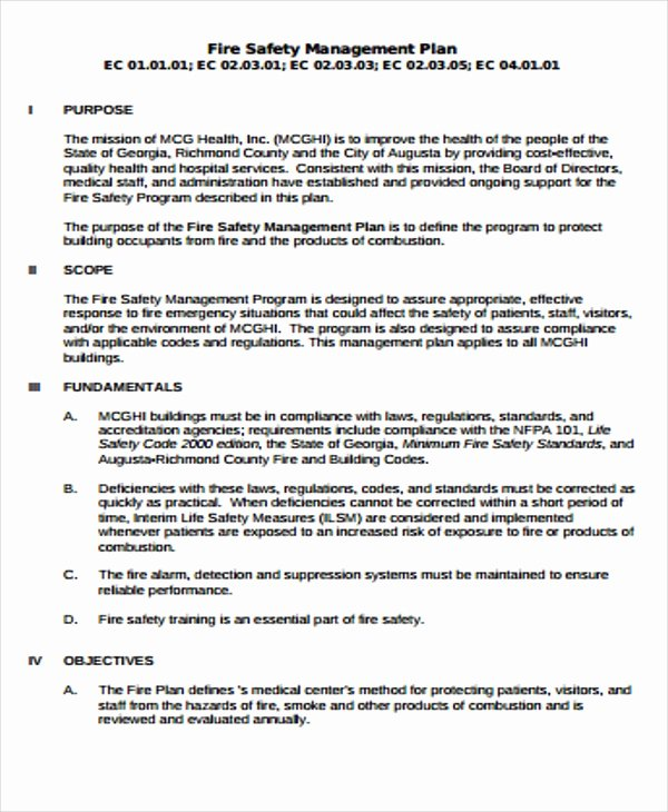 Fire Prevention Plan Template Fresh 29 Safety Plan formats