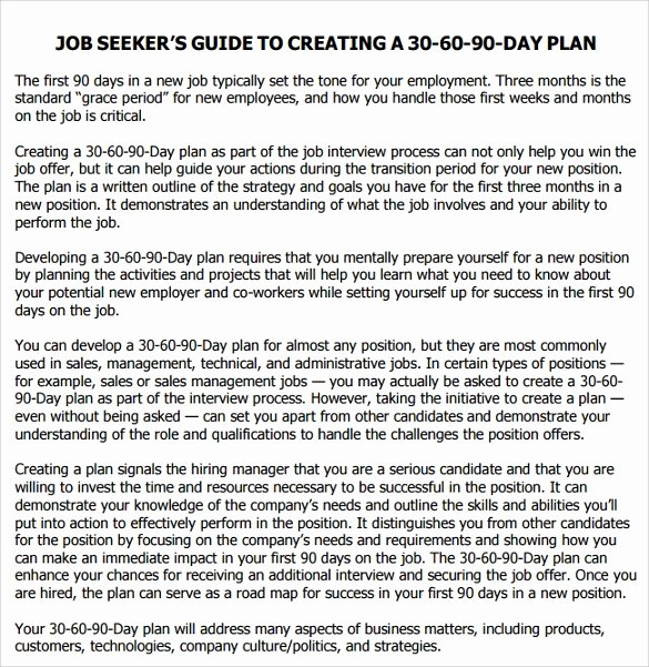 First 90 Days Plan Template Elegant Sample 90 Day Plan 14 Documents In Pdf Word