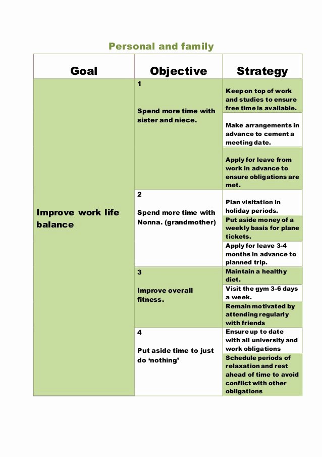 Five Year Plan Template New 5 Year Plan Template Personal