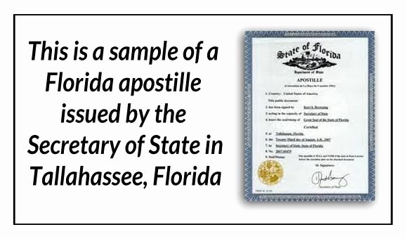 Florida Death Certificate Sample Inspirational 1000 Images About State Of Florida Sample Apostille On
