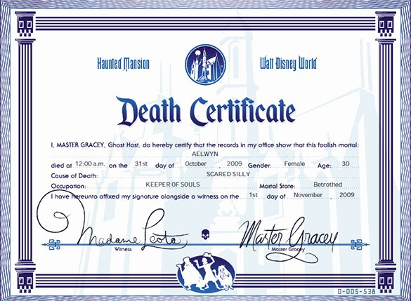 Florida Death Certificate Sample Lovely Death Certificate Template Microsoft Word