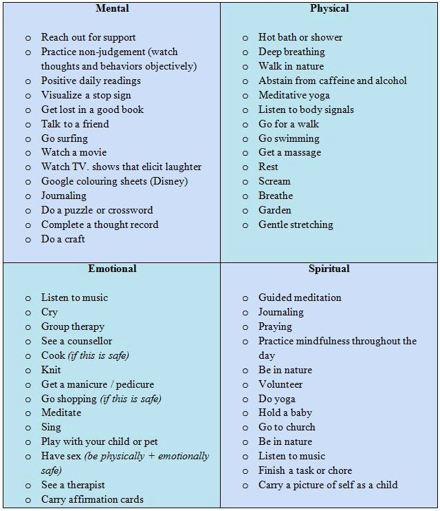 Fmcsa Safety Management Plan Template Lovely Domestic Violence Safety Plan Printable