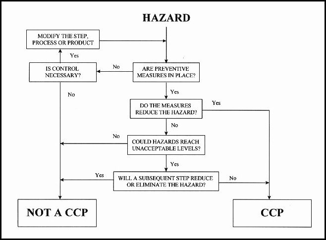 Food Safety Plan Template Elegant Line Haccp Consulting and Training Course for Hazard