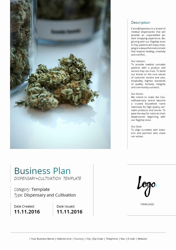 Free Dispensary Business Plan Template Elegant Dispensary Business Plan