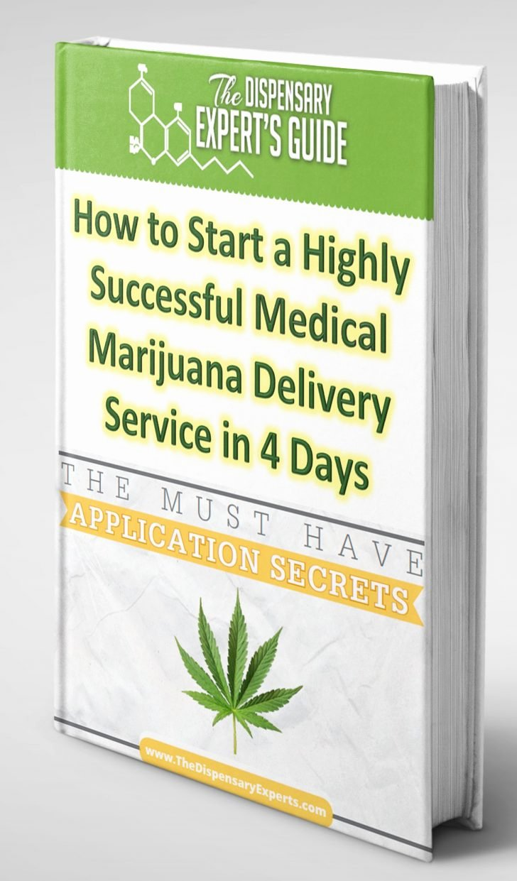 Free Dispensary Business Plan Template Inspirational Template Investment Summary Template Investor Business