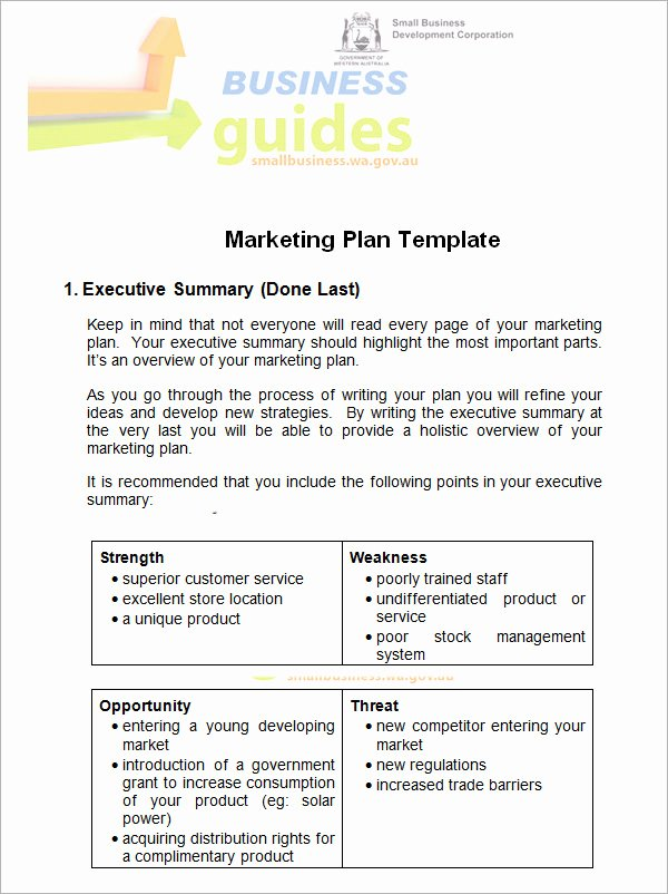 Free Marketing Plan Template Word Awesome 14 Sample Marketing Plan Templates