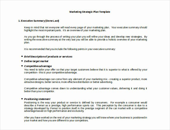 Free Marketing Plan Template Word Beautiful Marketing Strategy Templates 20 Pdf Word format
