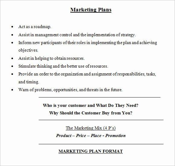 Free Marketing Plan Template Word Fresh Sample Marketing Plan 18 Examples format