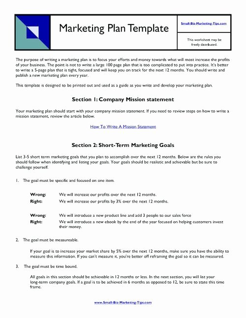 Free Marketing Plan Template Word Lovely Free Marketing Plan Template Word – Vitaminacfo