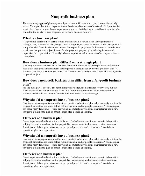 Free Nonprofit Business Plan Template Awesome Non Profit Business Plan 13 Pdf Word Documents