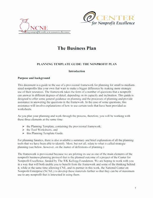 Free Nonprofit Business Plan Template Awesome Non Profit Business Plan Template – Siebeltrainingfo