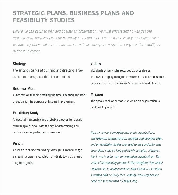 Free Nonprofit Business Plan Template Awesome Sample Non Profit Business Plan
