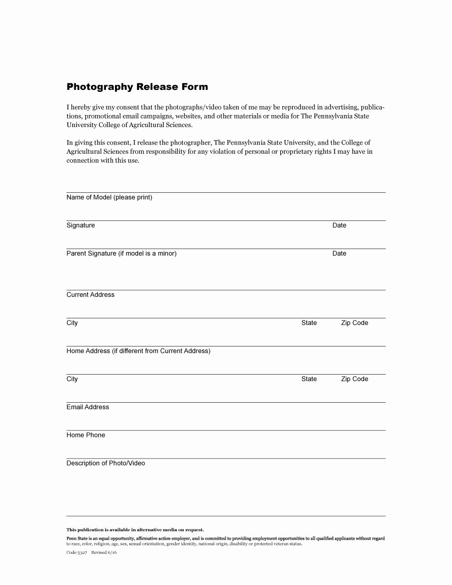 Free Printable Print Release form Luxury 53 Free Release form Templates [word Pdf]