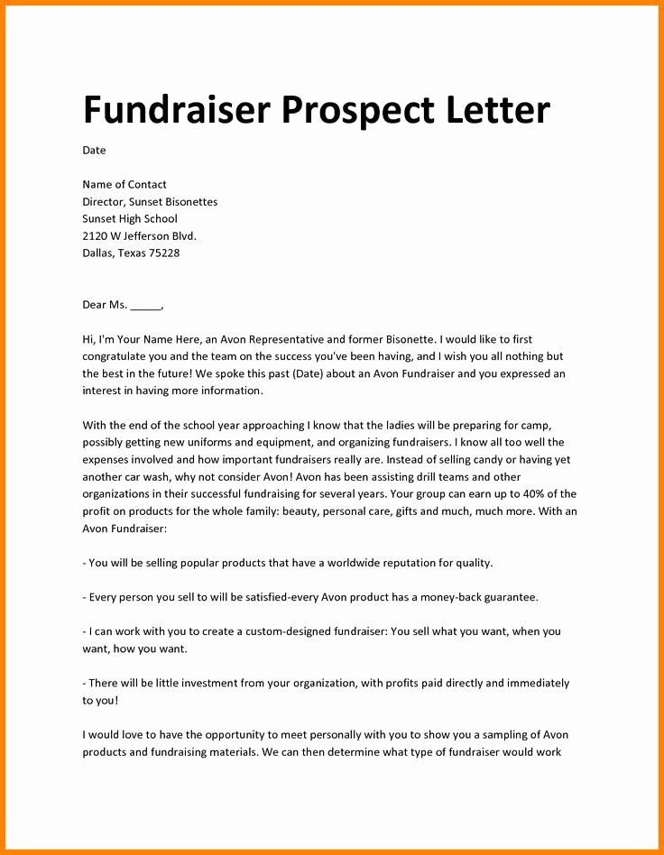Fundraiser Proposal Letter Best Of Best 25 Proposal Sample Ideas On Pinterest