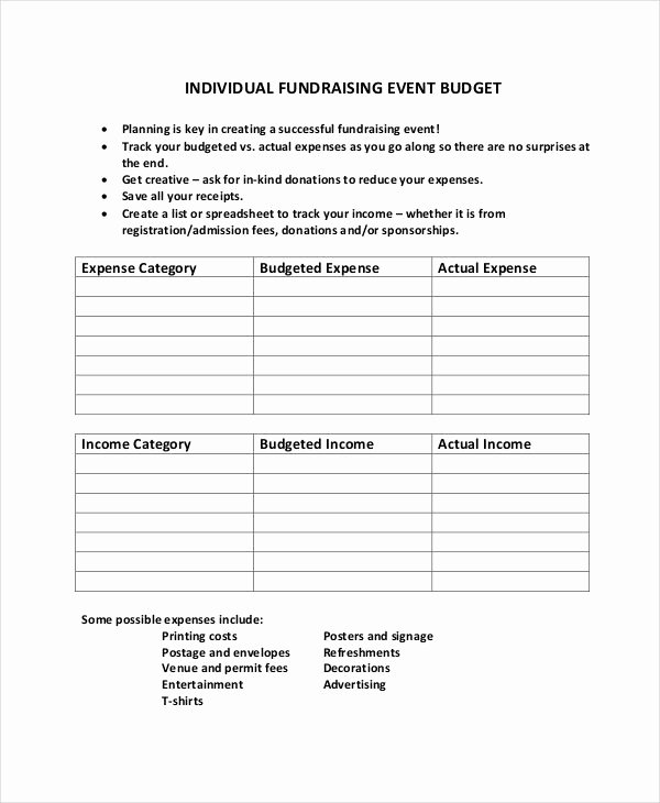 Fundraising Campaign Plan Template Inspirational 10 Fundraising Bud Templates Free Sample Example