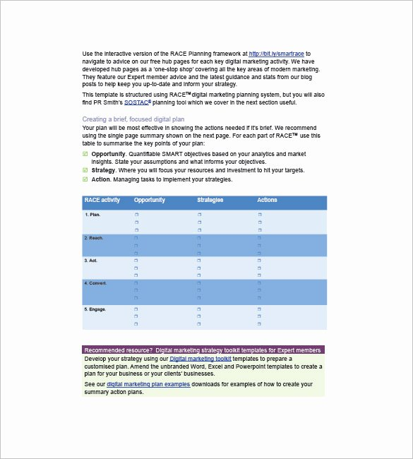 Fundraising Campaign Plan Template Inspirational Marketing Campaign Plan Template 11 Free Sample
