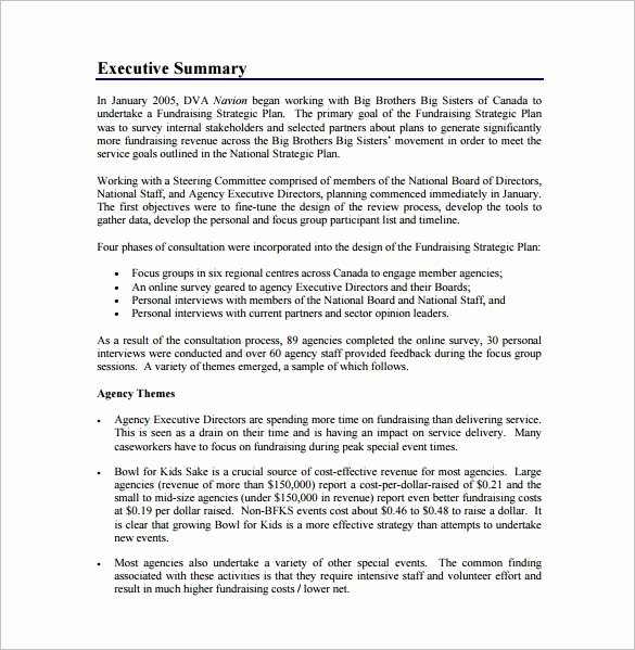 Fundraising Plan Template Free New Fundraising Plan Template – 7 Free Word Pdf Documents