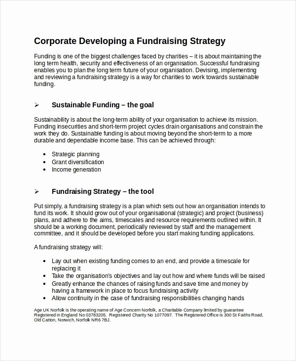 Fundraising Plan Template Word Best Of Fundraising Strategy Template 6 Free Word Pdf Document