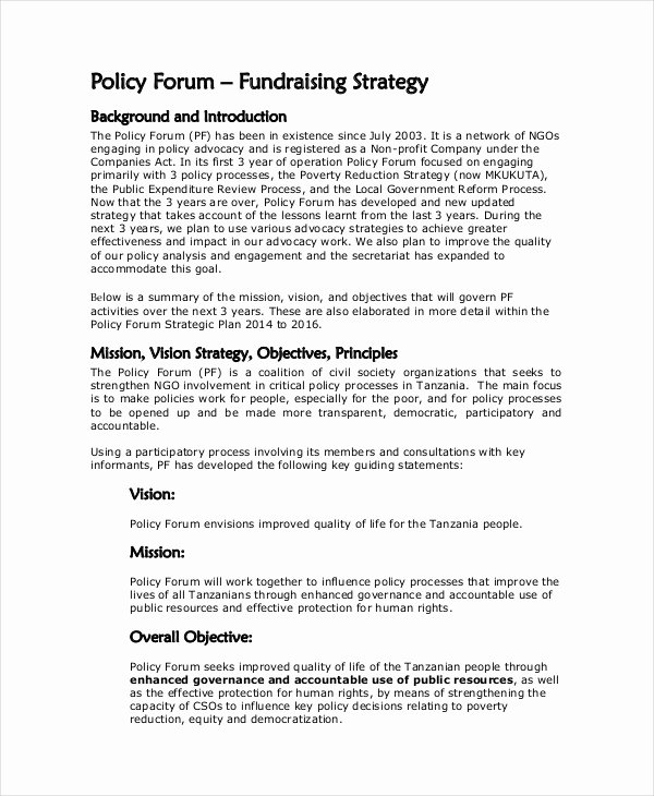 Fundraising Plan Template Word Inspirational Fundraising Strategy Template 6 Free Word Pdf Document