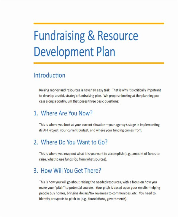 Fundraising Plan Template Word Lovely Fundraising Development Plan Template Non Profit