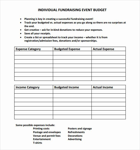 Fundraising Plan Template Word Luxury 9 event Bud Samples