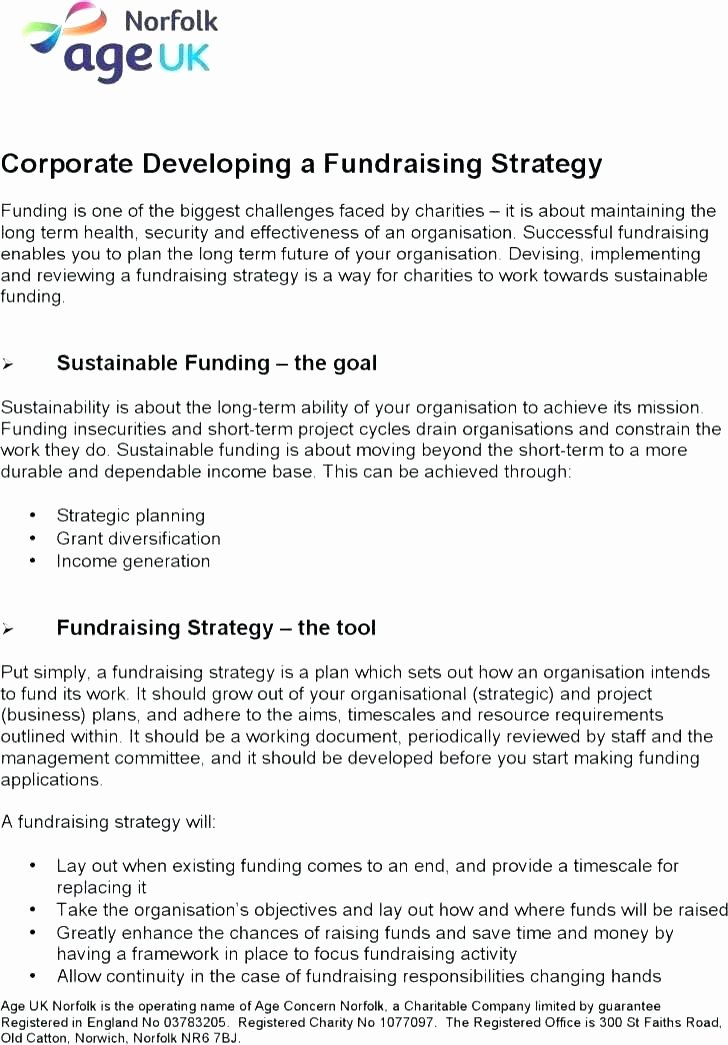 Fundraising Plan Template Word New Fundraising Schedule Template