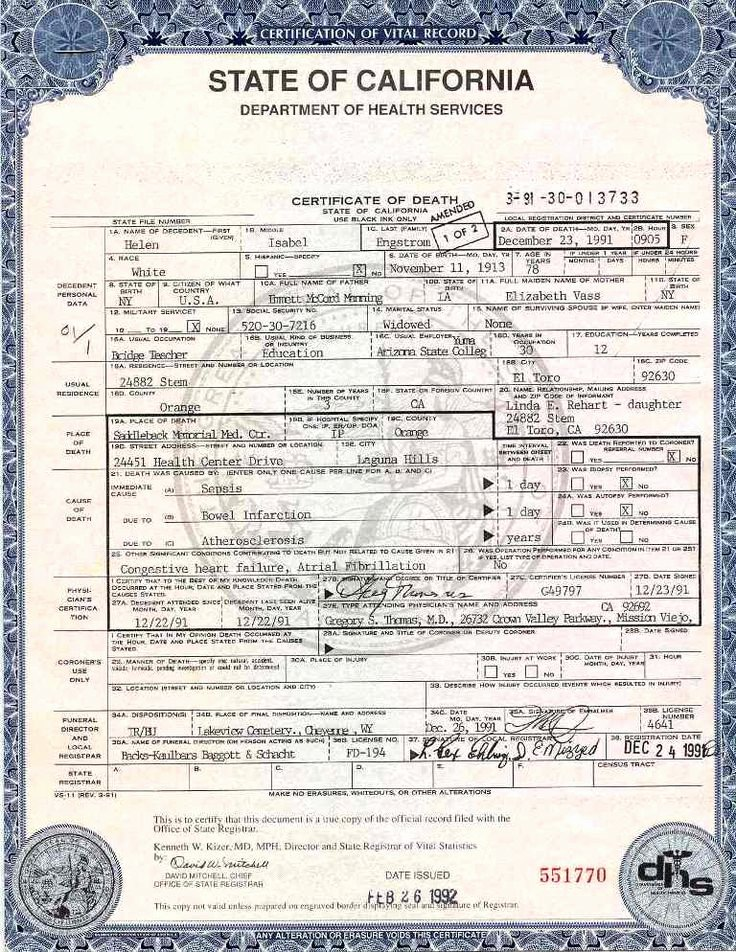 Georgia Death Certificate Template Luxury Blank Certificates Templates