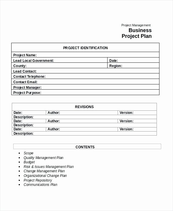 Google Docs Business Plan Template Lovely Project Management Business Plan Template – Syncla