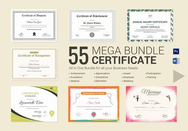 Google Docs Certificate Of Appreciation Inspirational 20 Sample Employment Certificate Templates