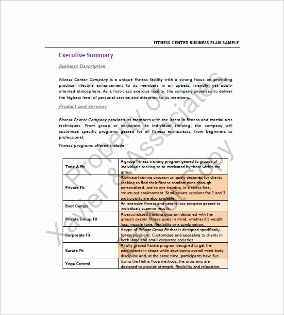 Gym Business Plan Template Lovely 16 Gym Business Plan Templates Google Docs Ms Word