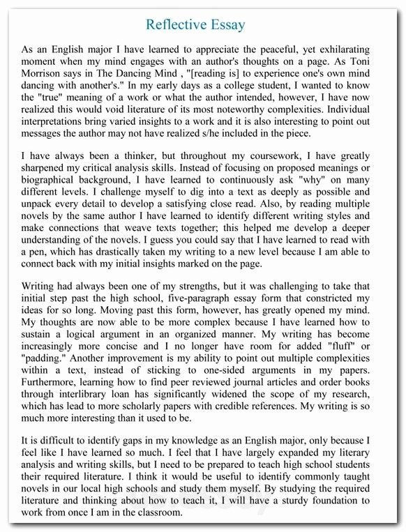 Harvard Letter Of Recommendation Awesome Harvard Reference Essay Sample