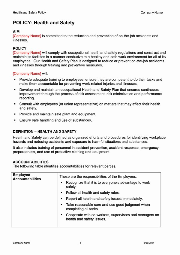 Health and Safety Plan Template Luxury Safety Plan Template Download now