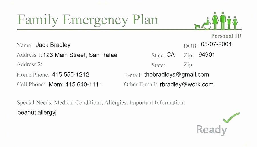 Hospital Emergency Preparedness Plan Template Fresh Emergency Plan Template Hospital Emergency Plan Sample