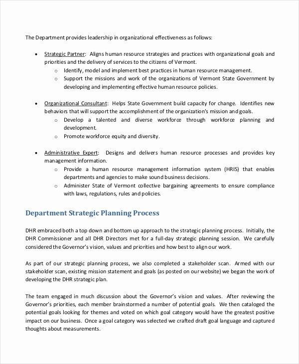 Hr Strategic Plan Template Unique 50 Examples Of Strategic Plans Pdf Word