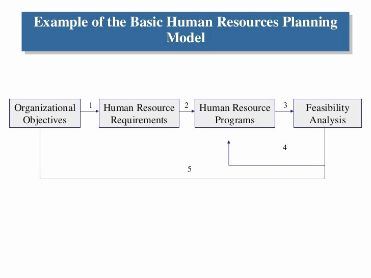 Human Resources Strategic Plan Template Inspirational Human Resource Planning