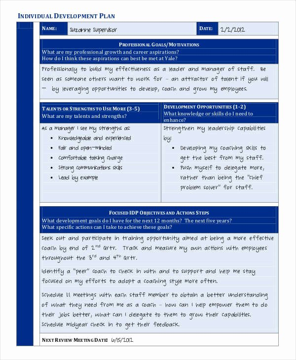 Individual Career Development Plan Template Awesome 39 Development Plan Samples Pdf Word