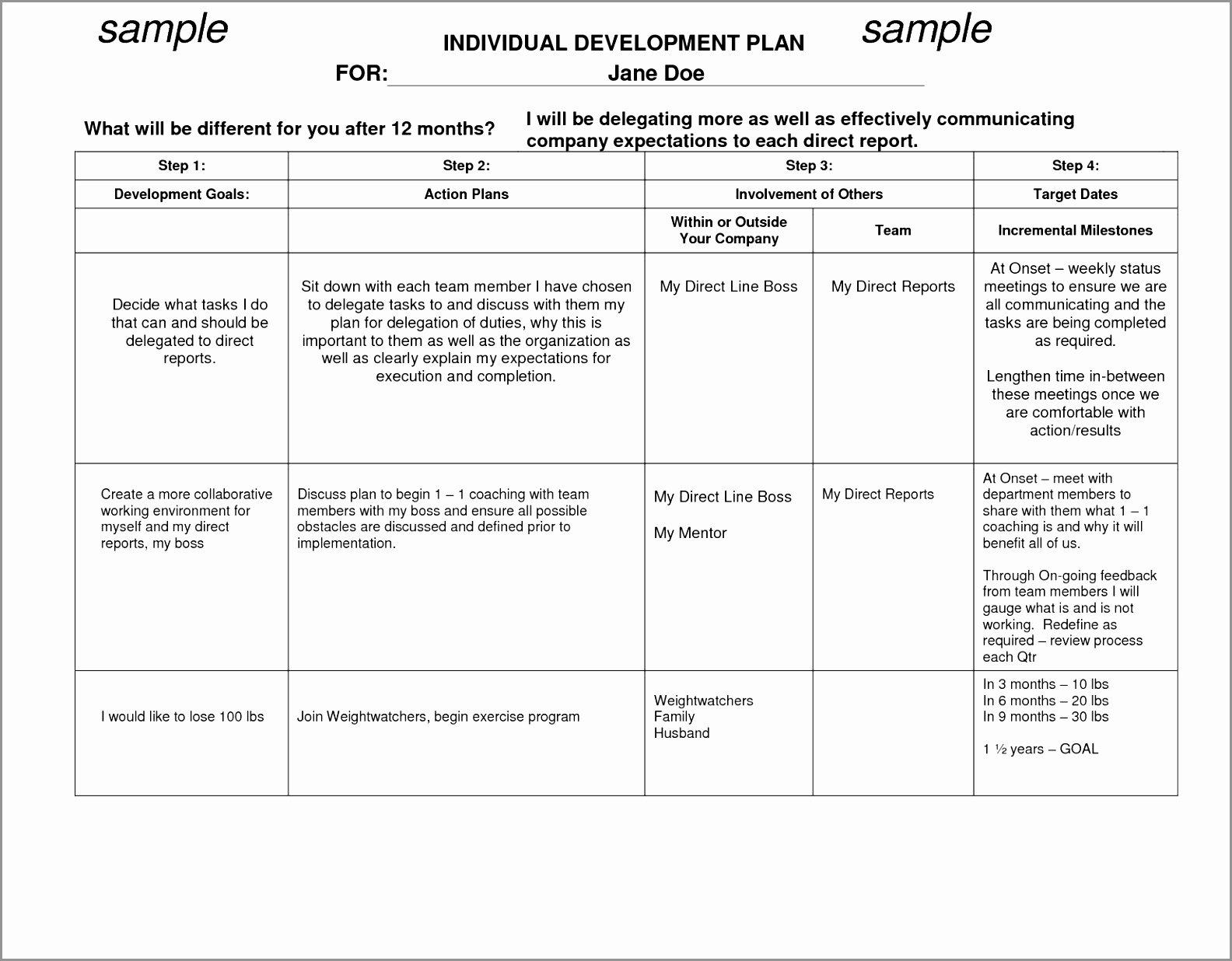 Individual Career Development Plan Template Best Of 12 Employee Career Development Plan Template Pujut