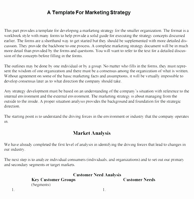 Information Technology Strategic Plan Template New Technology Strategy Template Information – Radioretail