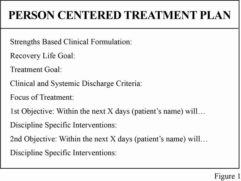 Inpatient Psychiatric Treatment Plan Template New Transforming Group Treatment In Acute Psychiatry the Cpa