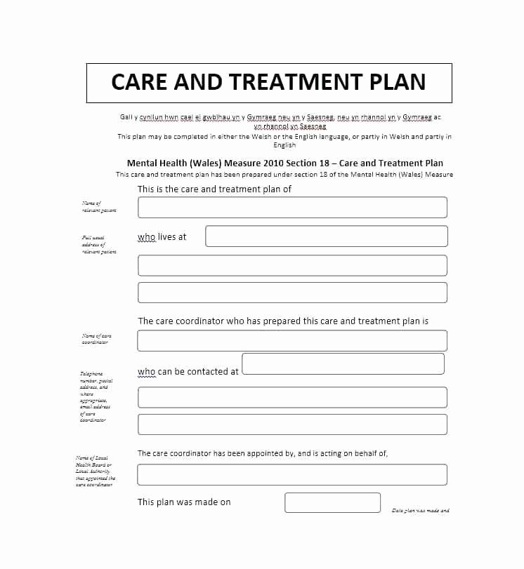 Inpatient Psychiatric Treatment Plan Template Unique Mental Health Treatment Plan Template Planning Sample