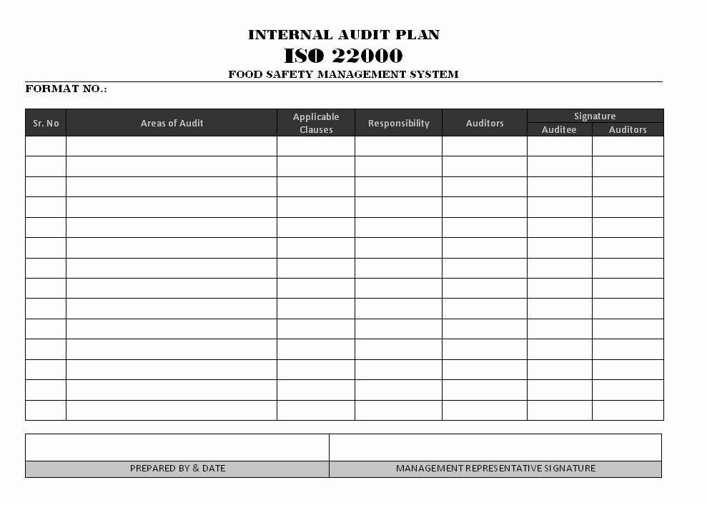 Internal Audit Plan Template Beautiful Internal Audit Schedule Template